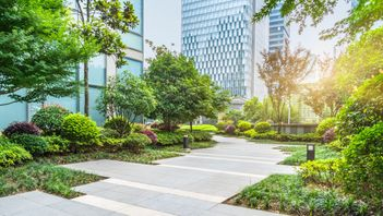 beautiful trees and landscaping in a commercial courtyard in Edmonton