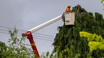 an arborist in a cherry picker truck examining branches growing too close to power lines