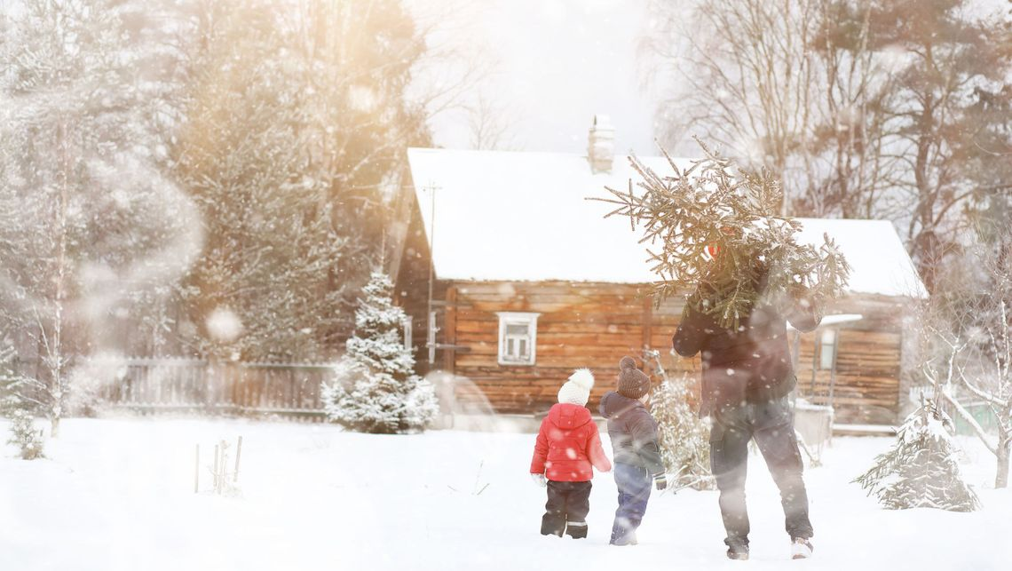 A family in winter looking at trees after a heavy snowfall in Edmonton